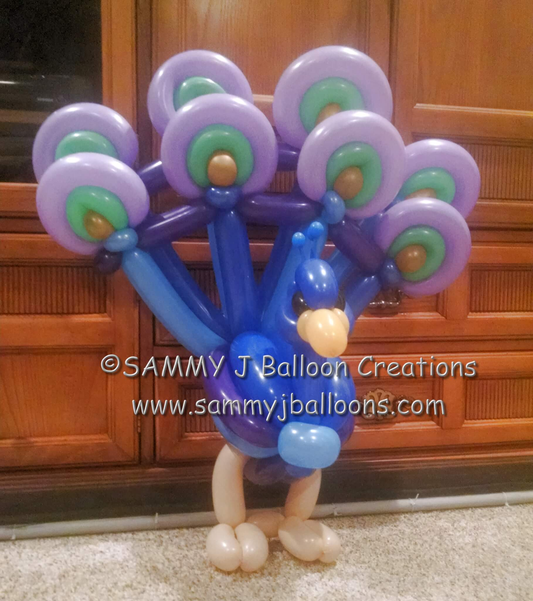 SAMMY J Balloon Creations st louis balloons peacock bird